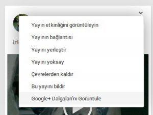 google-dalgalar